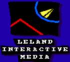Leland Interactive Media